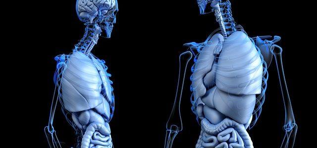 ¿Que es la medicina integrativa?